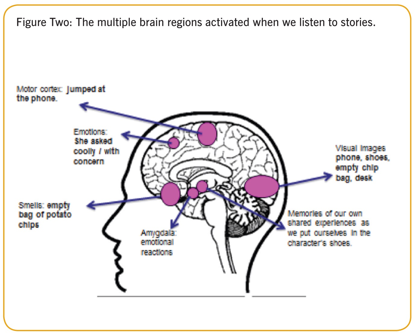 How Does Storytelling Affect Our Brains? Brandanew