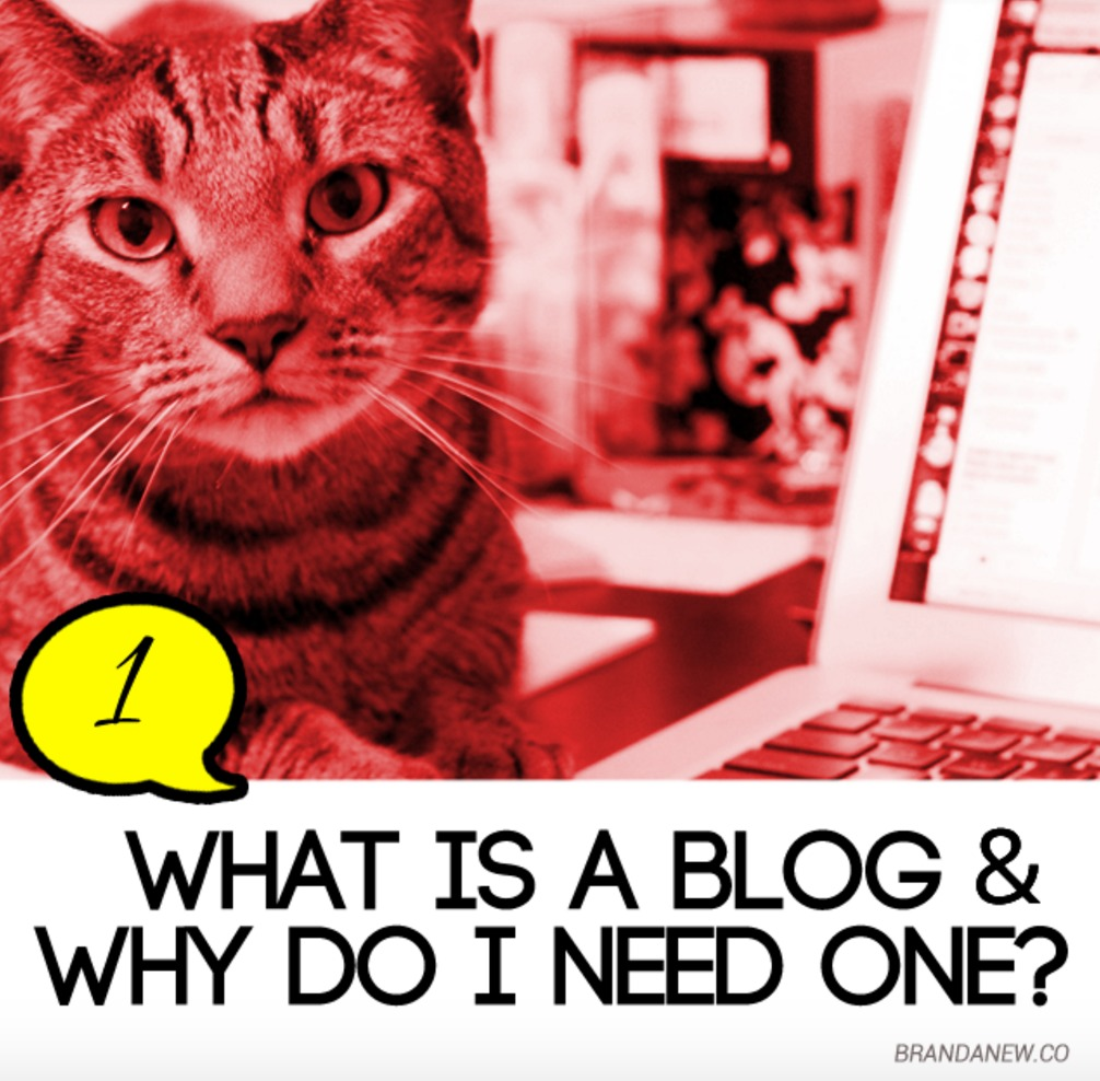 what is a blog and why do i need one brandanew