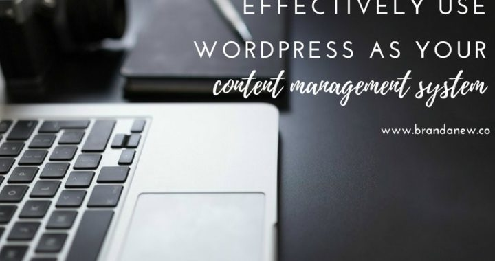 How to Effectively Use WordPress as a CMS