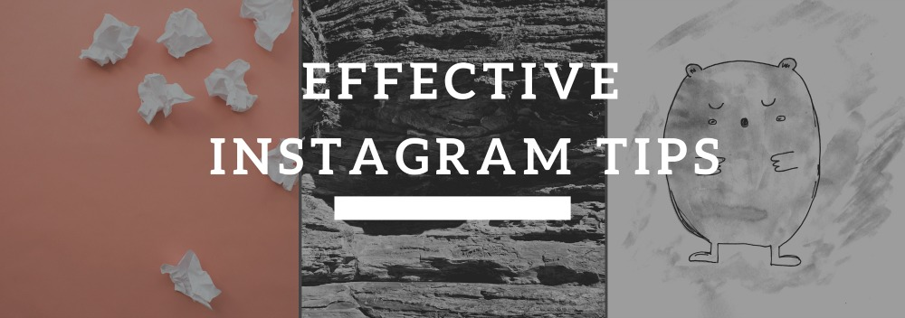 how to grow your instagram presence